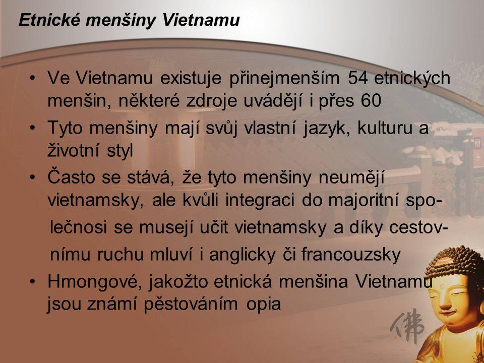 Etnické menšiny Vietnamu