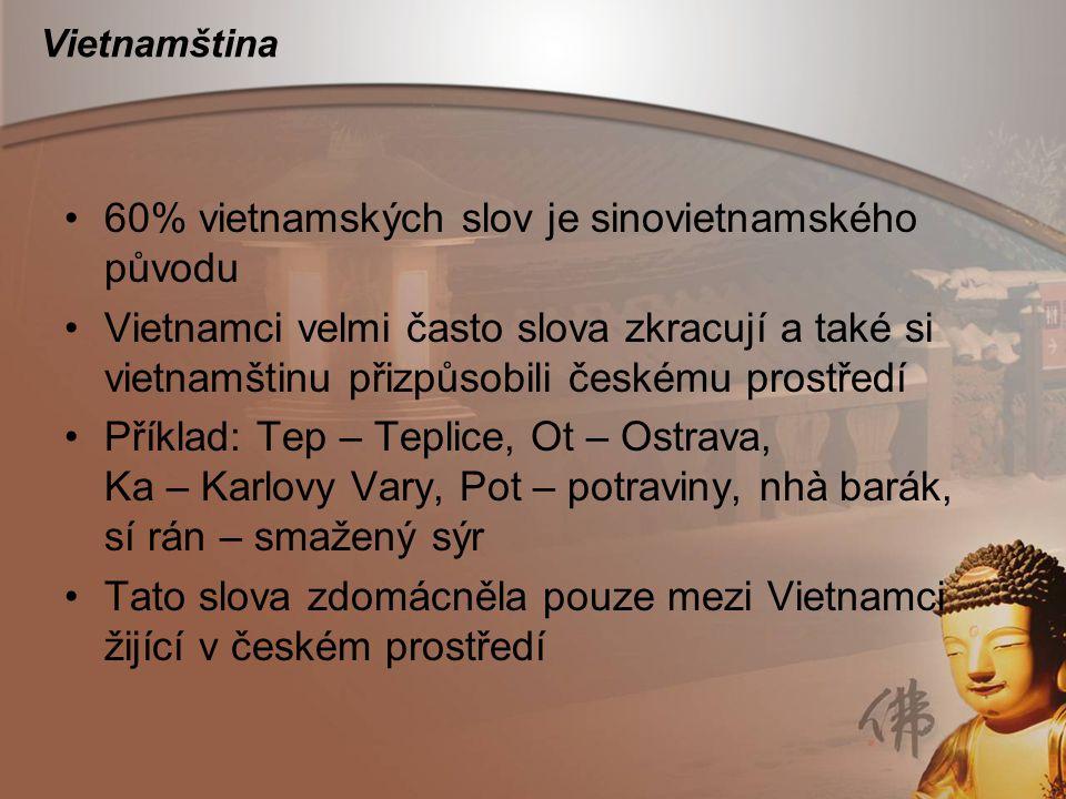 60% vietnamských slov je sinovietnamského původu
