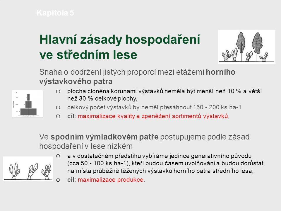Hlavní zásady hospodaření ve středním lese