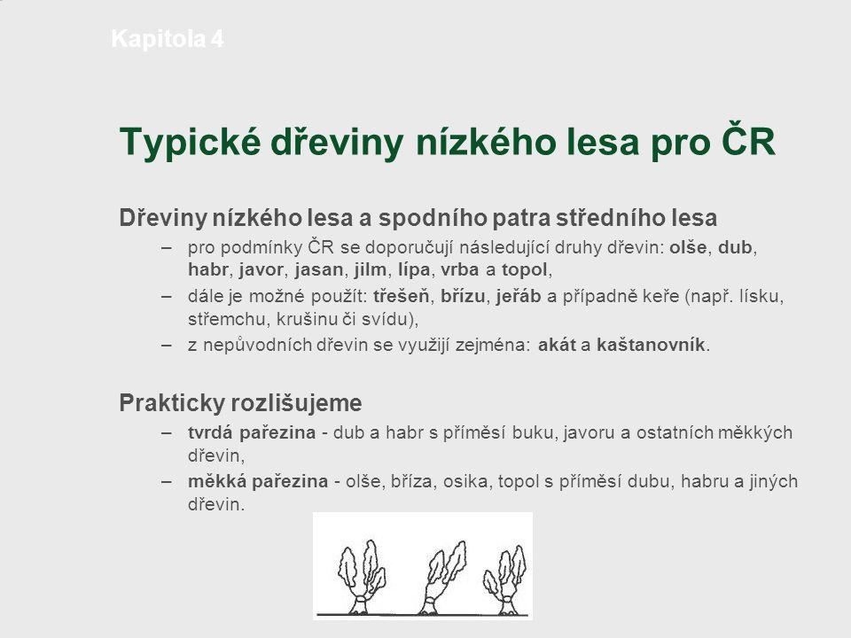 Typické dřeviny nízkého lesa pro ČR