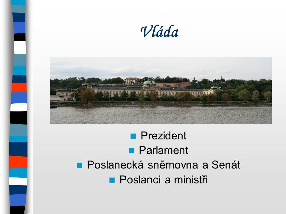 Poslanecká sněmovna a Senát