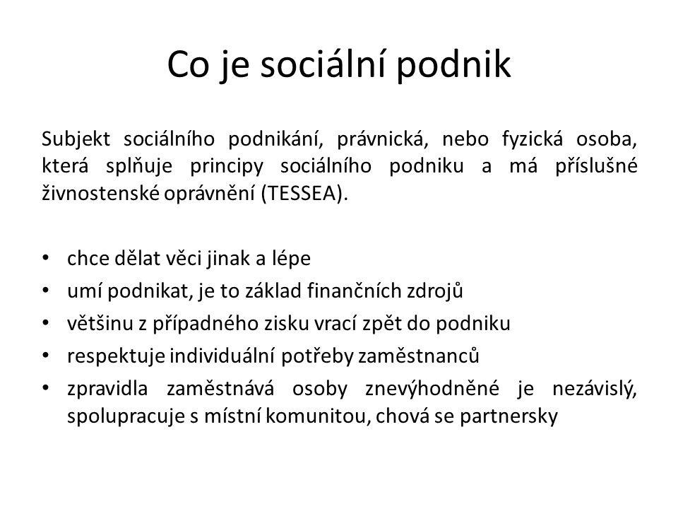 Co je sociální podnik