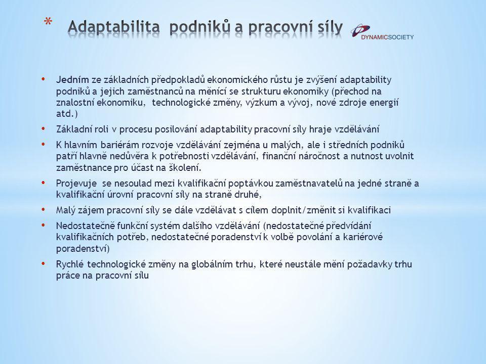 Adaptabilita podniků a pracovní síly