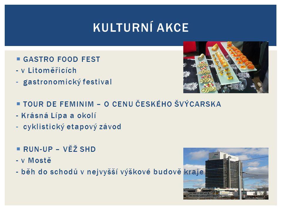 Kulturní akce GASTRO FOOD FEST - v Litoměřicích gastronomický festival