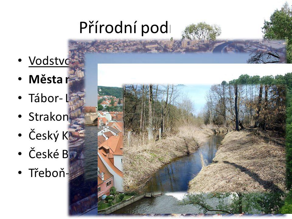 Přírodní podmínky Vodstvo Města na řekách(doplň názvy řek)