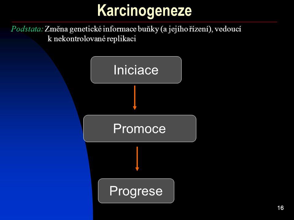 Karcinogeneze Iniciace Promoce Progrese