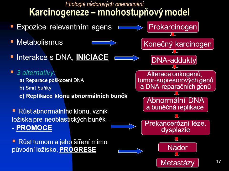 Karcinogeneze – mnohostupňový model