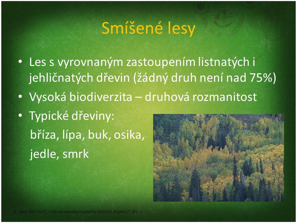 Smíšené lesy Les s vyrovnaným zastoupením listnatých i jehličnatých dřevin (žádný druh není nad 75%)
