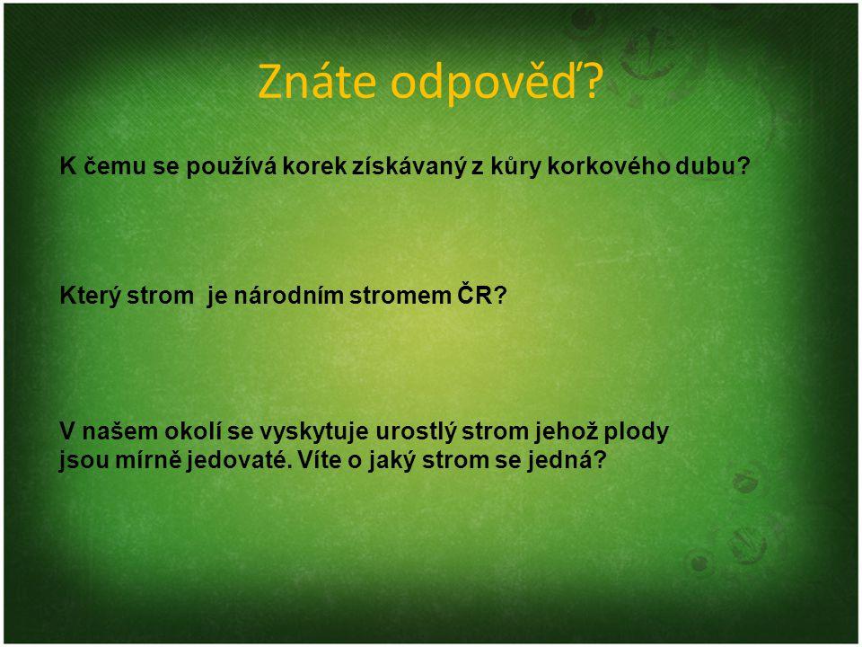 Znáte odpověď K čemu se používá korek získávaný z kůry korkového dubu Který strom je národním stromem ČR