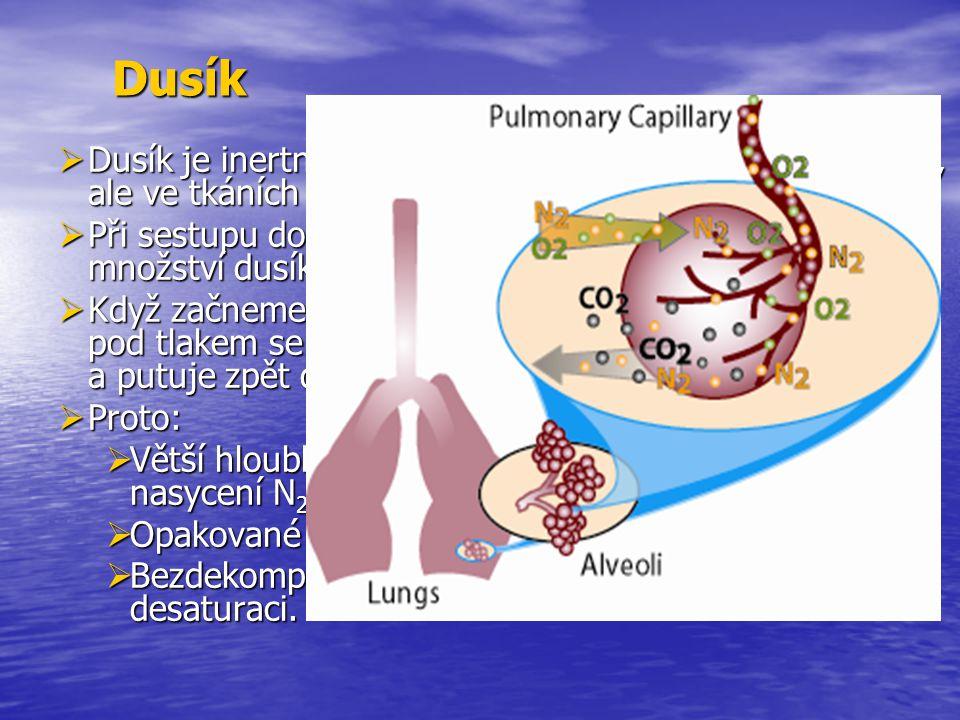 Dusík Dusík je inertní plyn, který lidský organismus nevyužívá, ale ve tkáních se rozpouští.