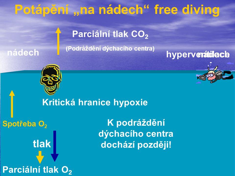 """Potápění """"na nádech free diving"""