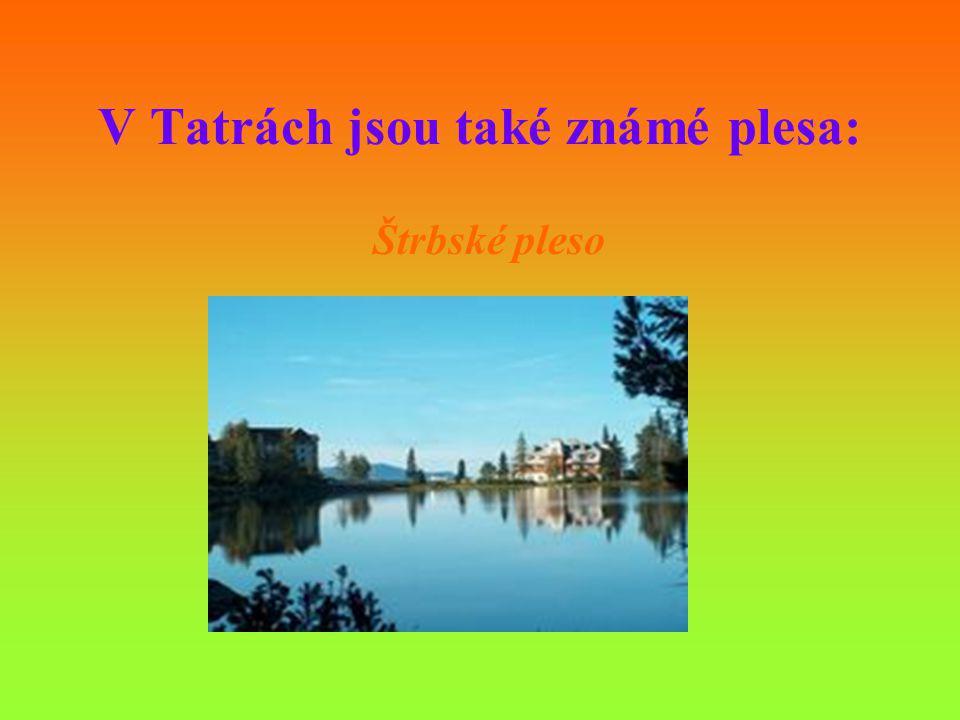 V Tatrách jsou také známé plesa: