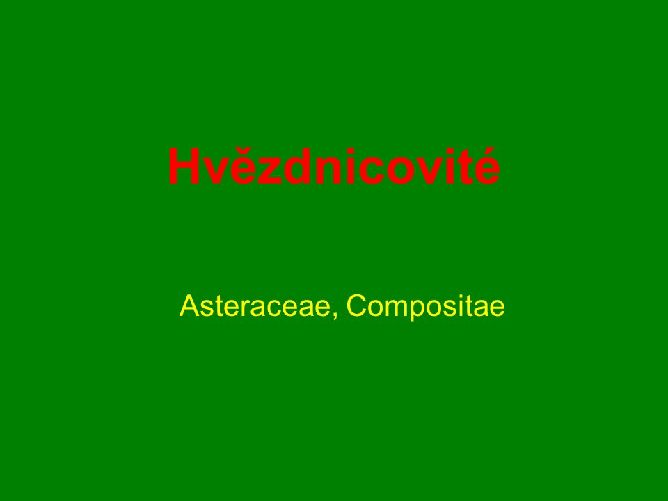 Asteraceae, Compositae