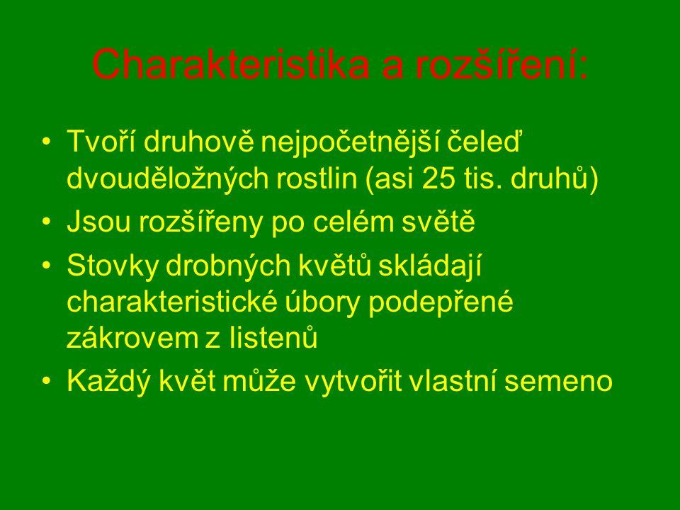 Charakteristika a rozšíření: