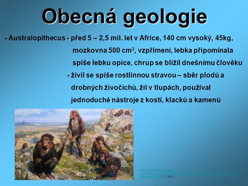 Obecná geologie - Australopithecus - před 5 – 2,5 mil. let v Africe, 140 cm vysoký, 45kg, mozkovna 500 cm3, vzpřímení, lebka připomínala.