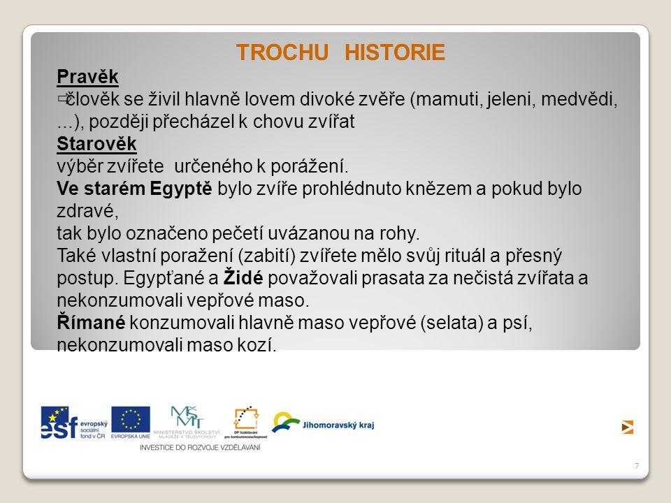 TROCHU HISTORIE Pravěk