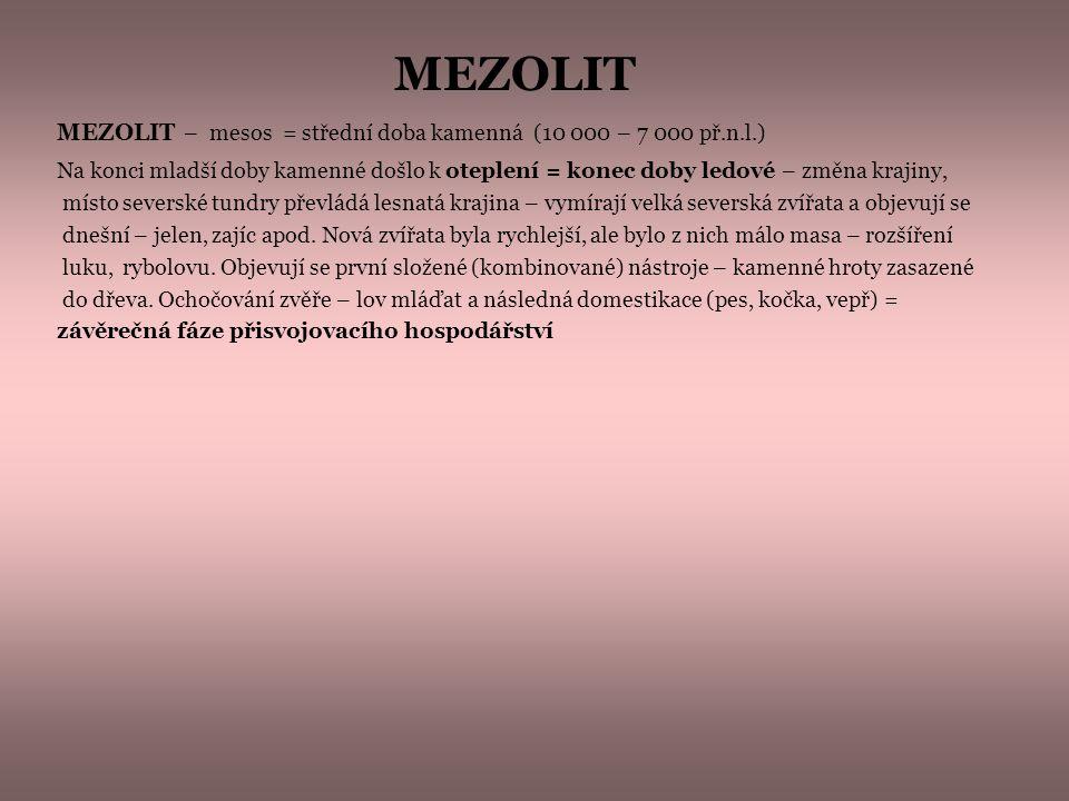 MEZOLIT MEZOLIT – mesos = střední doba kamenná (10 000 – 7 000 př.n.l.)