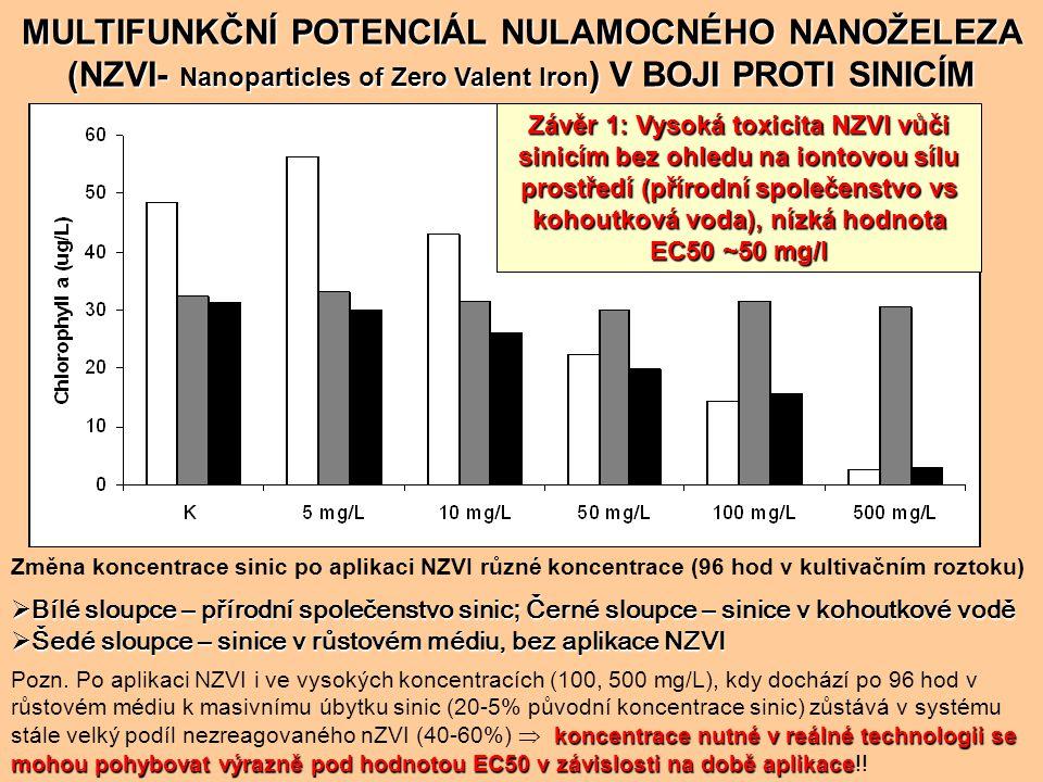 MULTIFUNKČNÍ POTENCIÁL NULAMOCNÉHO NANOŽELEZA (NZVI- Nanoparticles of Zero Valent Iron) V BOJI PROTI SINICÍM