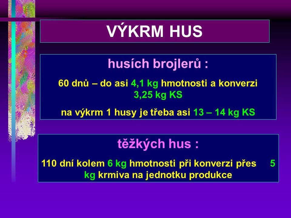VÝKRM HUS husích brojlerů : těžkých hus :
