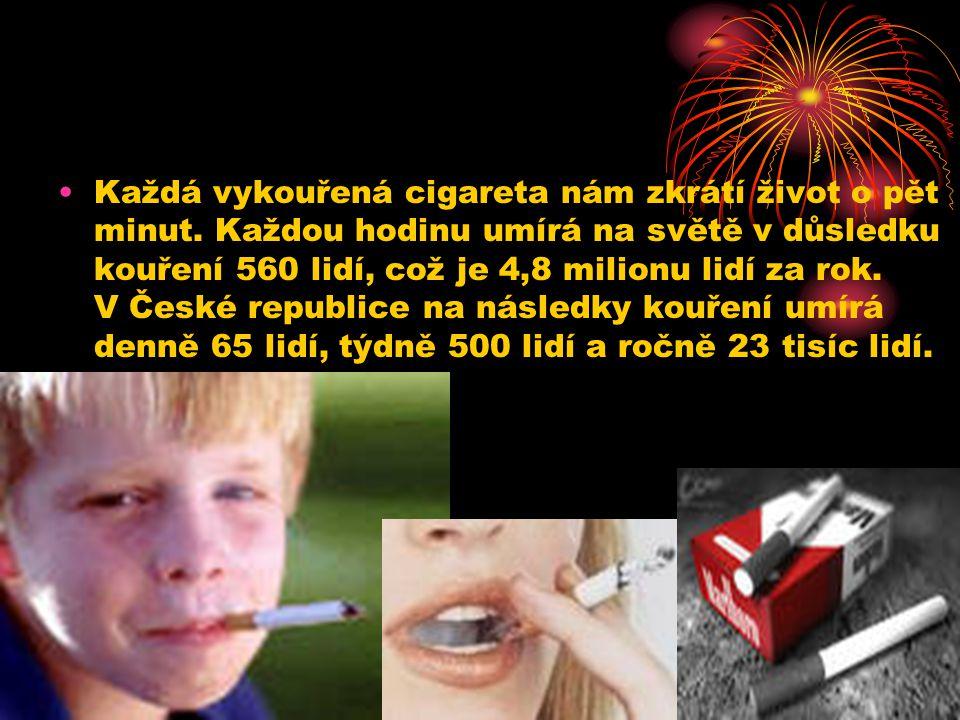 Každá vykouřená cigareta nám zkrátí život o pět minut