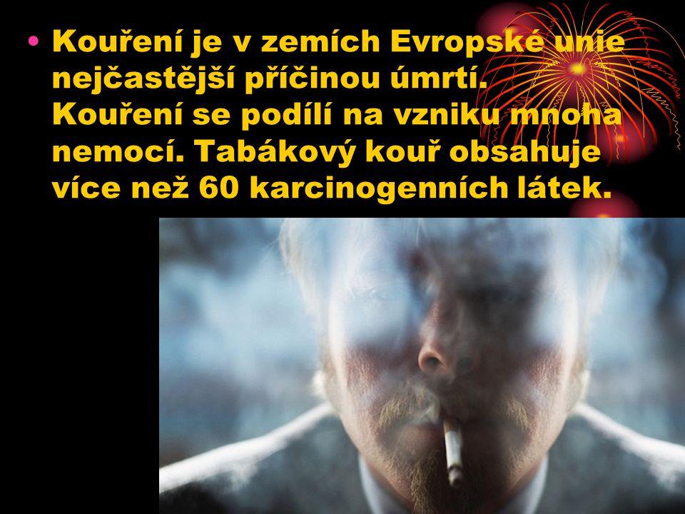 Kouření je v zemích Evropské unie nejčastější příčinou úmrtí