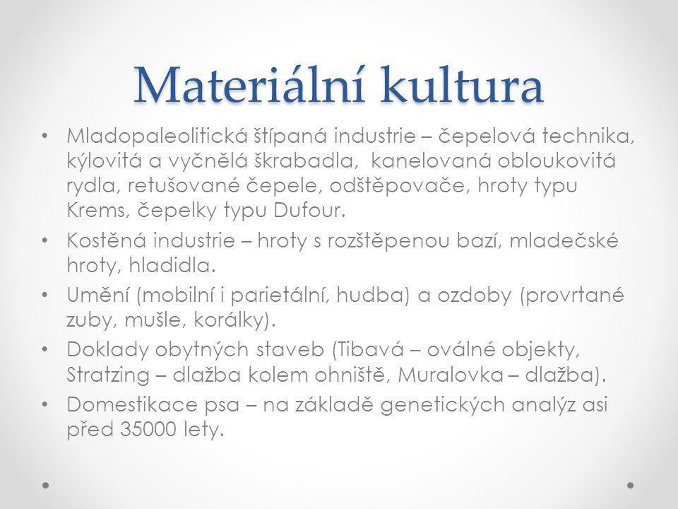 Materiální kultura