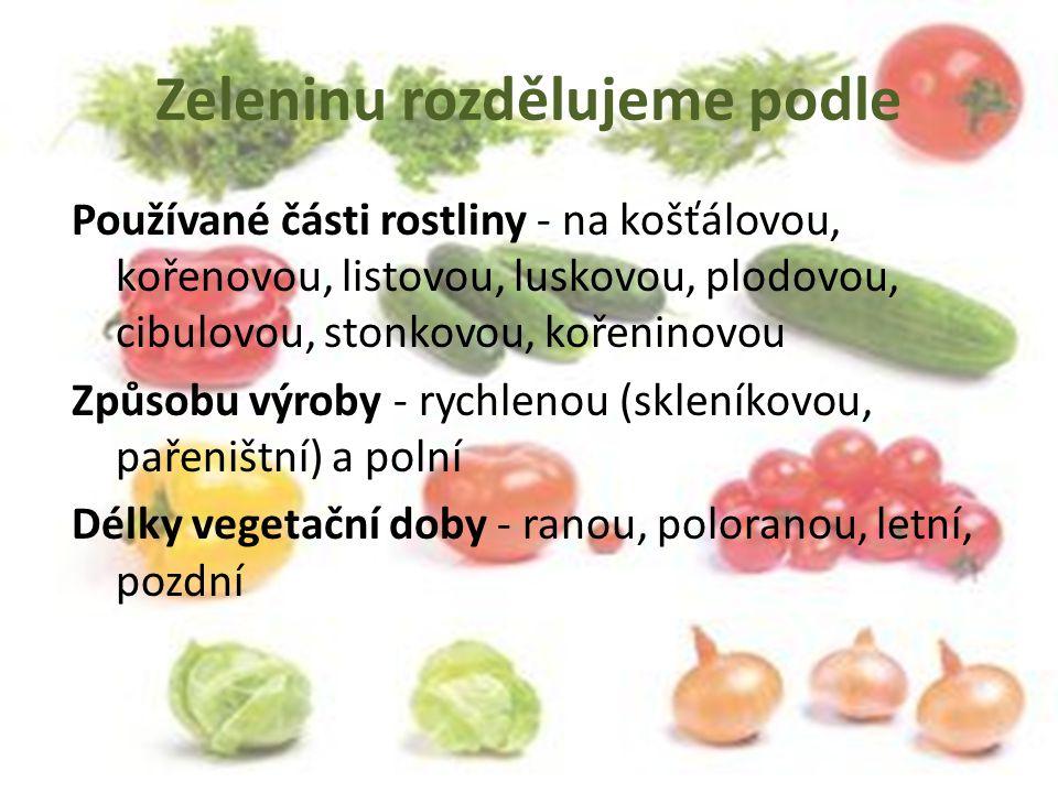 Zeleninu rozdělujeme podle