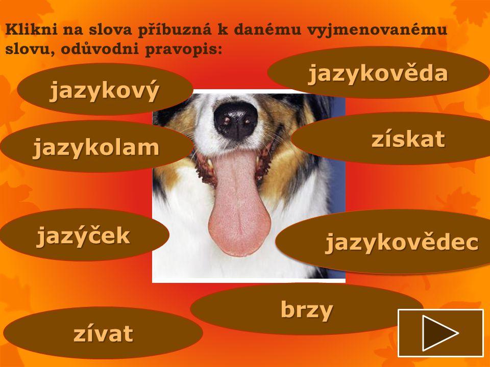 jazykověda jazykový získat jazykolam jazýček jazykovědec brzy zívat