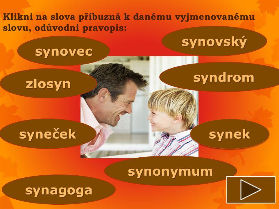 synovský synovec syndrom zlosyn syneček synek synonymum synagoga