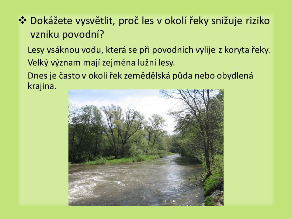 Dokážete vysvětlit, proč les v okolí řeky snižuje riziko vzniku povodní