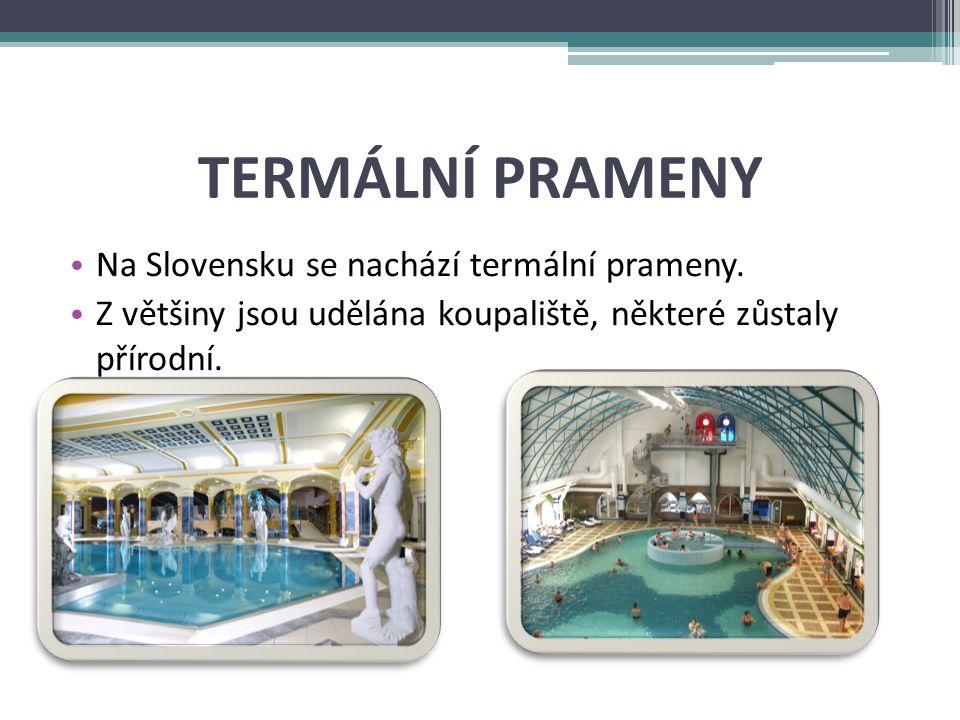 TERMÁLNÍ PRAMENY Na Slovensku se nachází termální prameny.