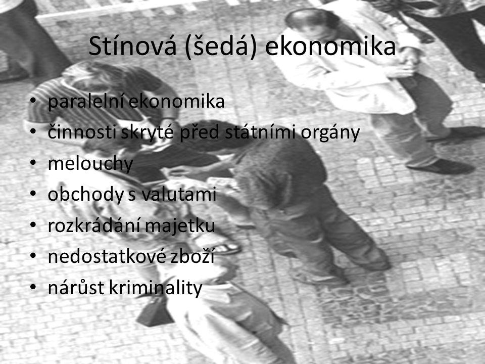 Stínová (šedá) ekonomika