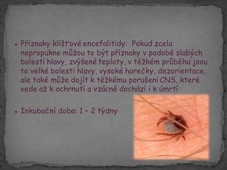 ● Příznaky klíšťové encefalitidy: Pokud zcela nepropukne můžou to být příznaky v podobě slabých bolestí hlavy, zvýšené teploty, v těžkém průběhu jsou to velké bolesti hlavy, vysoké horečky, dezorientace, ale také může dojít k těžkému porušení CNS, které vede až k ochrnutí a vzácně dochází i k úmrtí ● Inkubační doba: 1 – 2 týdny