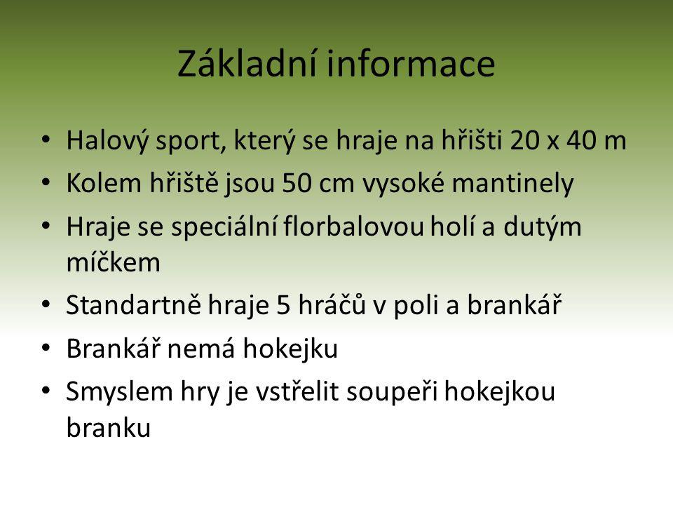 Základní informace Halový sport, který se hraje na hřišti 20 x 40 m