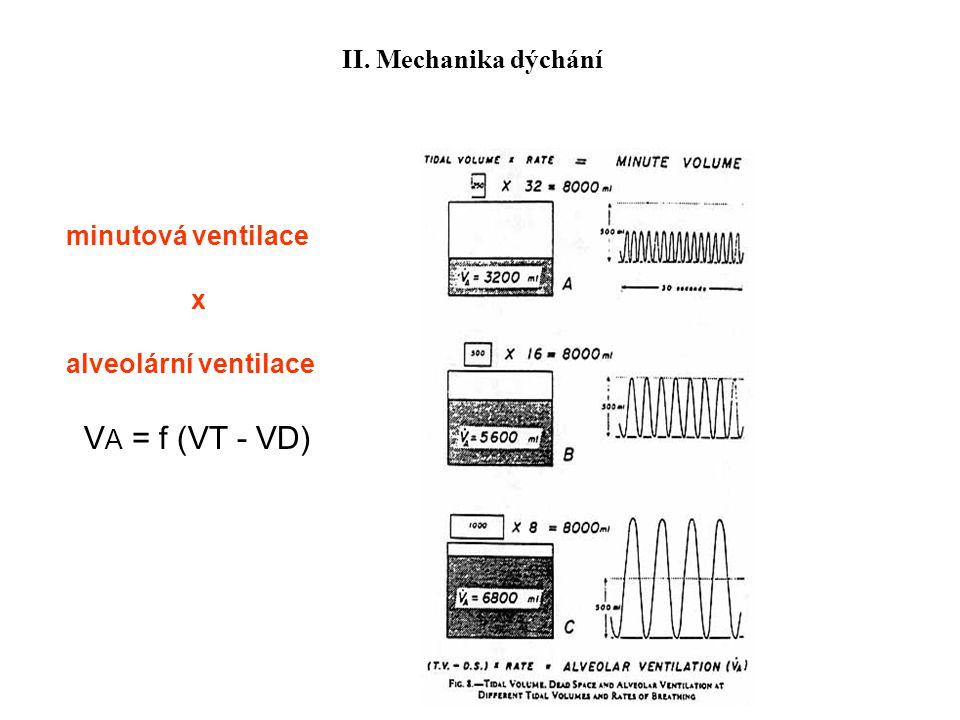VA = f (VT - VD) II. Mechanika dýchání minutová ventilace x