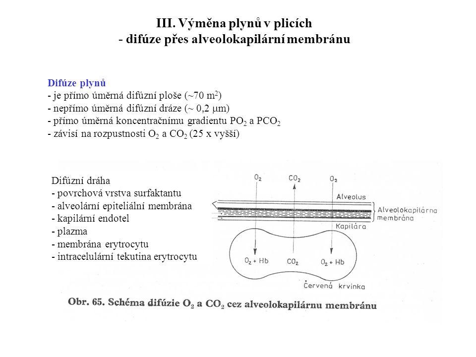 III. Výměna plynů v plicích - difúze přes alveolokapilární membránu