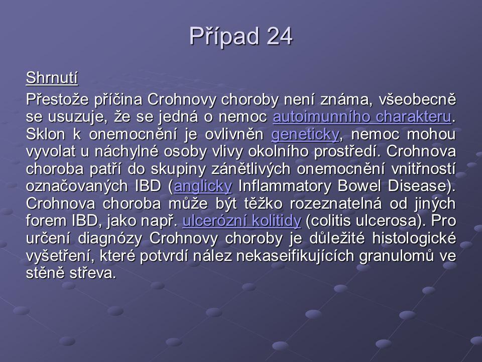 Případ 24 Shrnutí.