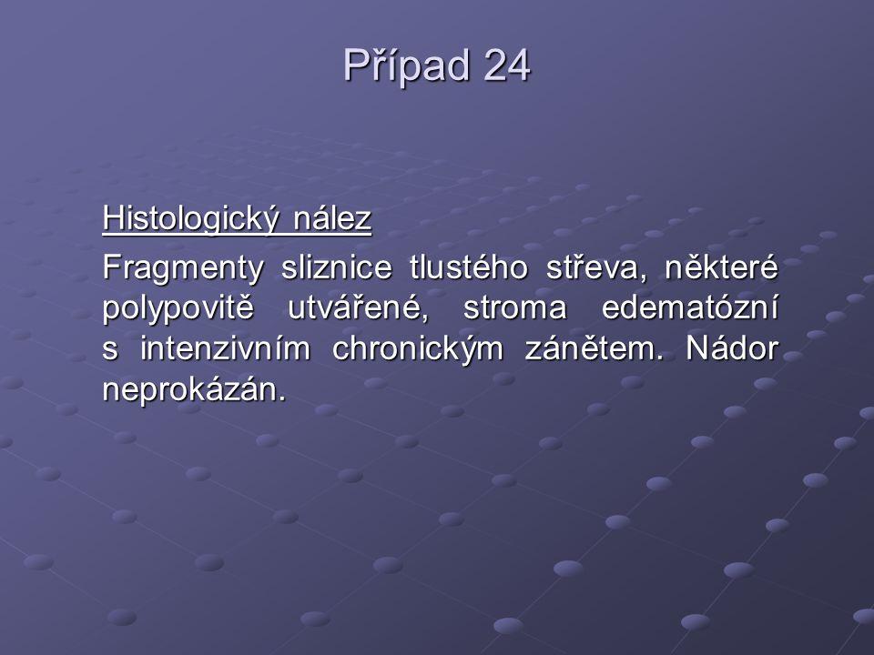 Případ 24 Histologický nález