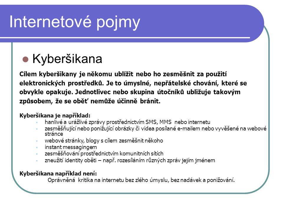 Internetové pojmy Kyberšikana