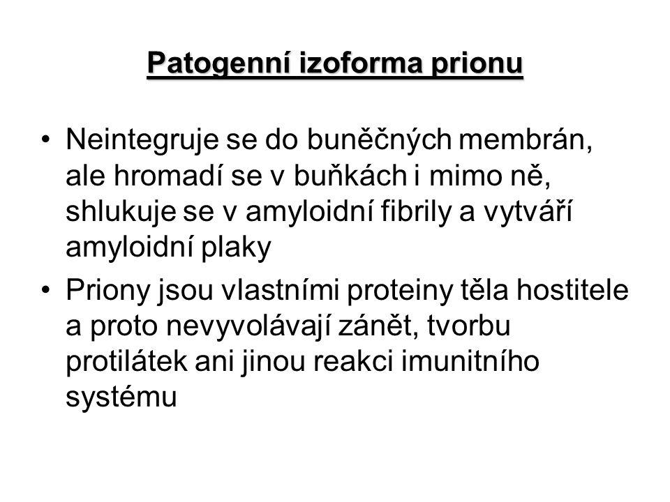 Patogenní izoforma prionu
