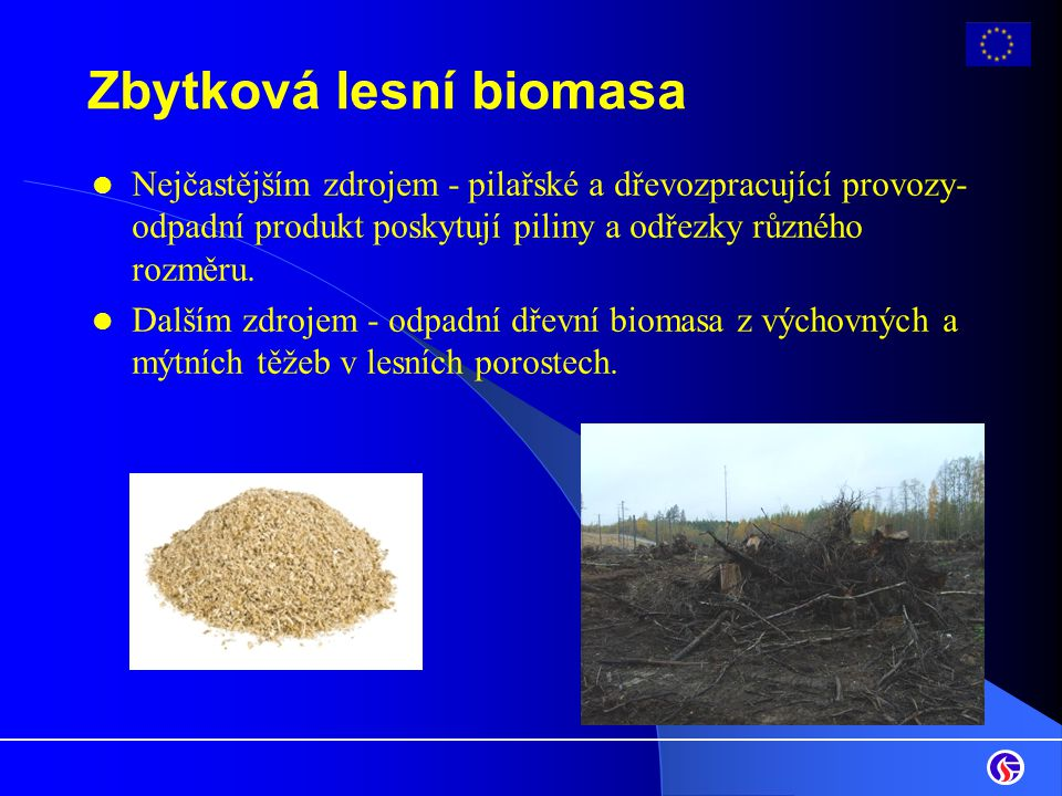 Zbytková lesní biomasa