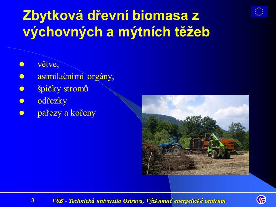 Zbytková dřevní biomasa z výchovných a mýtních těžeb