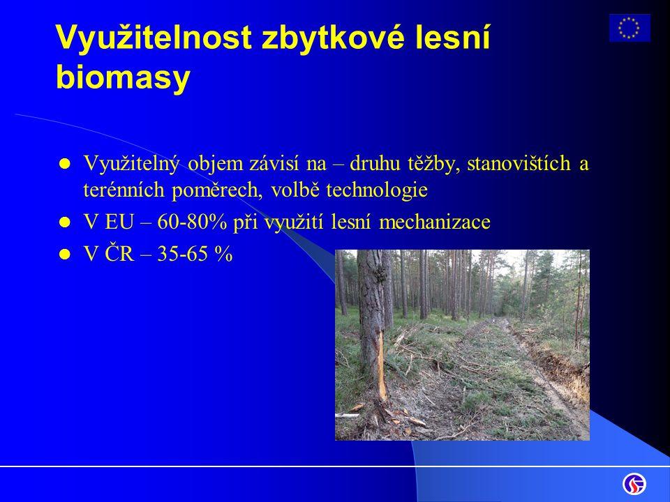 Využitelnost zbytkové lesní biomasy