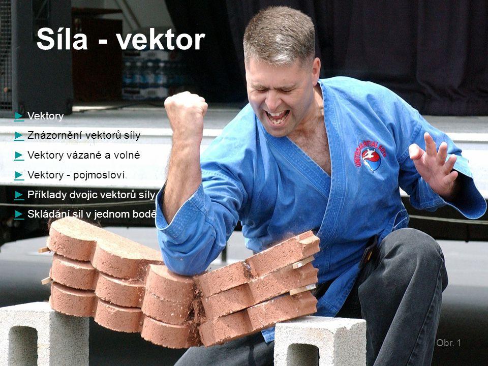 Síla - vektor ► Vektory ► Znázornění vektorů síly