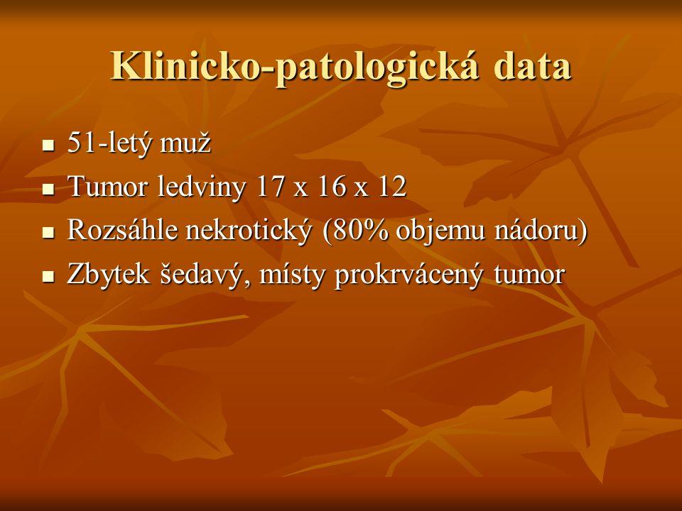 Klinicko-patologická data