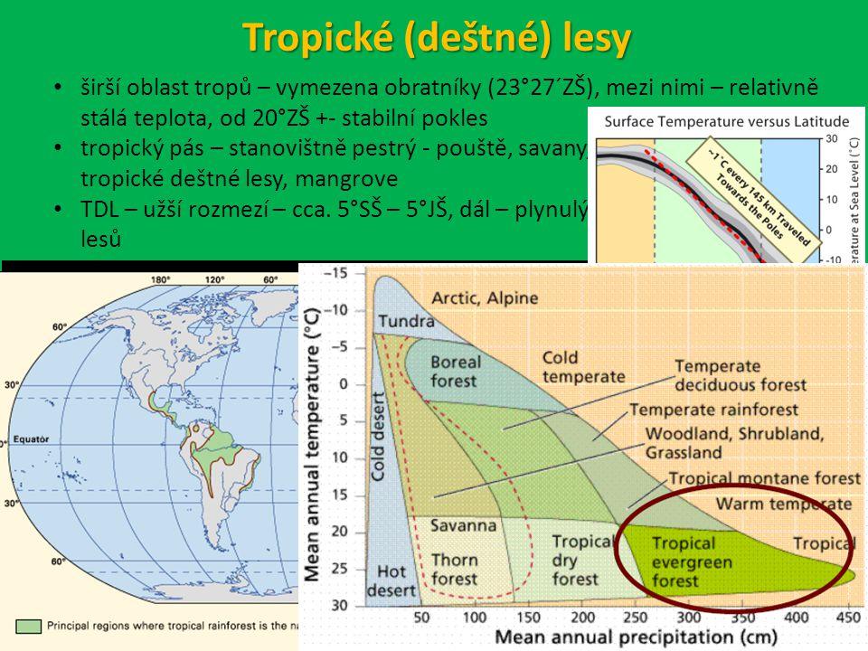 Tropické (deštné) lesy