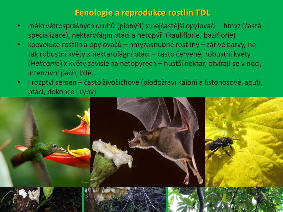 Fenologie a reprodukce rostlin TDL