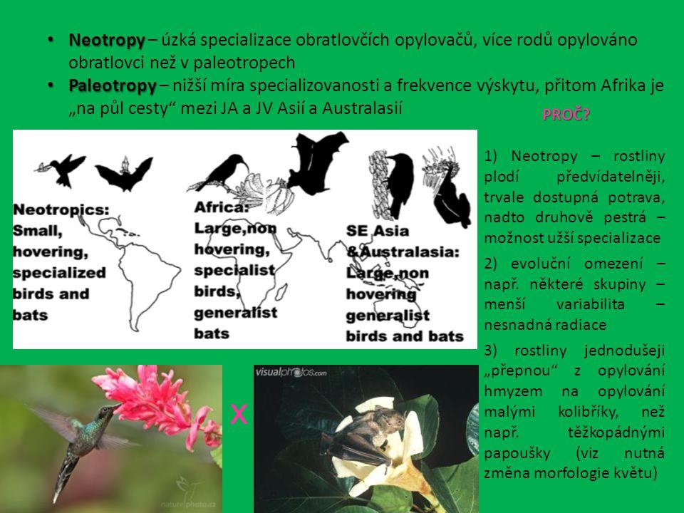 Neotropy – úzká specializace obratlovčích opylovačů, více rodů opylováno obratlovci než v paleotropech