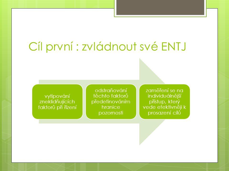 Cíl první : zvládnout své ENTJ