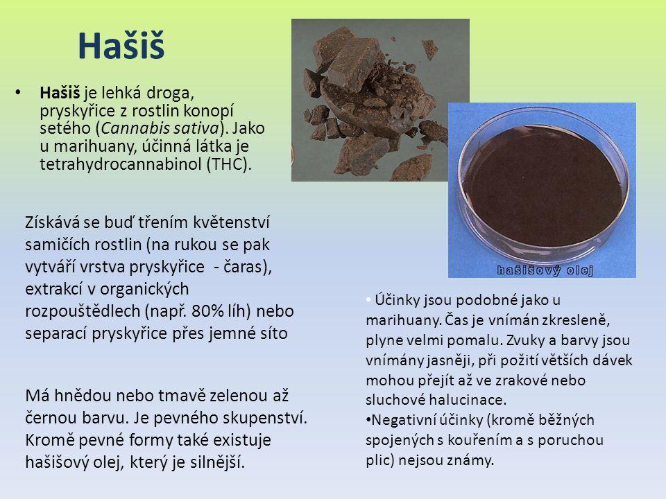 Hašiš Hašiš je lehká droga, pryskyřice z rostlin konopí setého (Cannabis sativa). Jako u marihuany, účinná látka je tetrahydrocannabinol (THC).